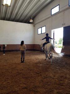 Experiências a cavalo (gratuito para crianças)